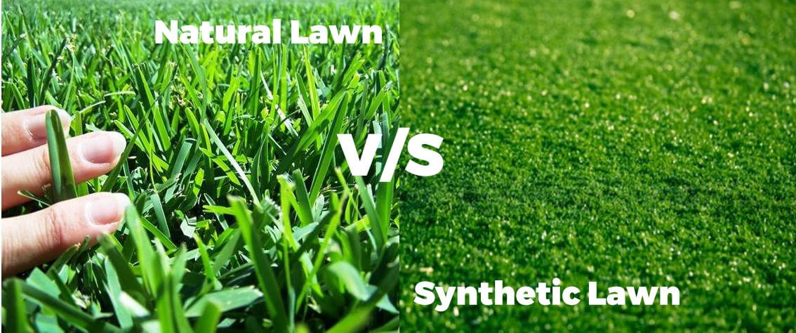 Natural Lawn vs Synthetic Lawn